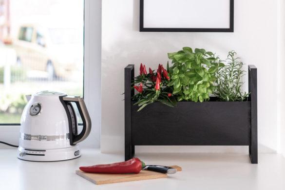 DIY Kräuter Plantbox