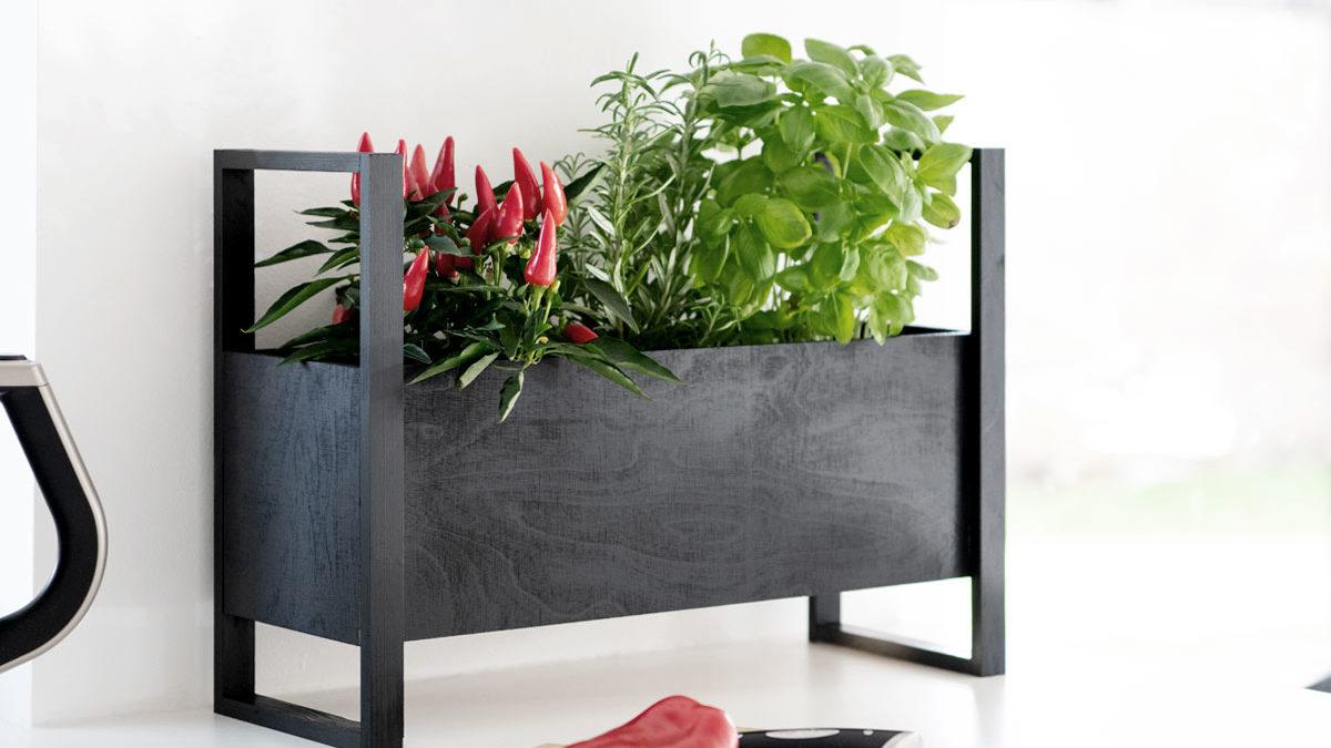 <b>DIY Plant Box</b> für Deine Küchenkräuter