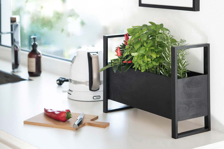DIY Plantbox Kräuter